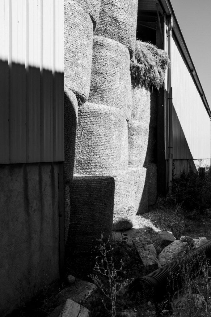 Laiterie Burdigala - Bordeaux